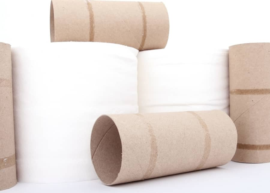Sustainable Alternatives to Toilet Paper