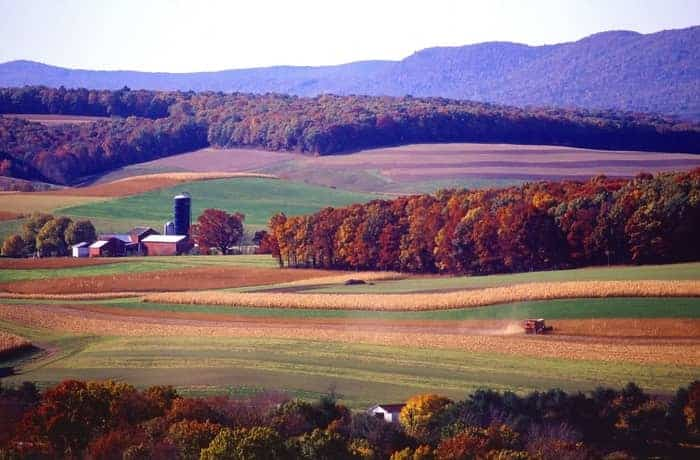 Homesteading in Pennsylvania