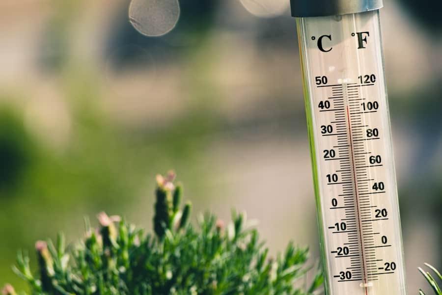 Heat Wave FAQs