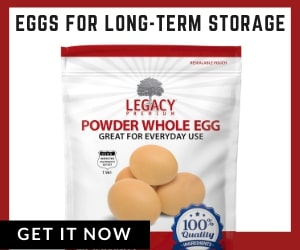 Long-term food storage eggs